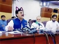פוליטיקאי פקיסטני עם פילטר חתול על פניו / צילום מסך
