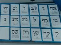 """השר ישראל כ""""ץ מצביע / צילום: יח""""צ"""