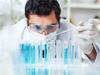 התרופה של Silenseed תוקפת את הגן האחראי על התפתחות הגידול בסרטן הלבלב / צילום: Shutterstock/א.ס.א.פ קרייטיב