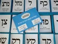 הצבעה בבחירות לכנסת ה-22 / צילום: שלומי יוסף, גלובס