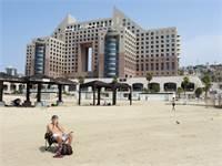מגדלי חוף כרמל / צילום: דב גרינבלט, החברה להגנת הטבע