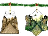 קישוטי חג המולד עם צילומי מחנות השמדה שנמכרו באמזון / צילום: צילום מסך