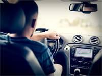 אפליקציית ניווט ברכב / צילום: שאטרסטוק