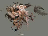 כרמי דרור / צילום: אייל אגיבייב באדיבות המרכז לאמנות עכשווית תל אביב