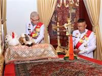 אנשי המלך מכינים את חתול המחלוקת לטקס של מלך תאילנד / צילום: The Committee on Public Relations of th