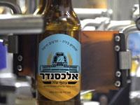 בירה אלכסנדר / צילום: מנחם רייס