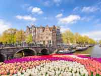 אמסטרדם / צילום: Shutterstock