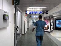 עובדים בחינם / צילום: תמר מצפי
