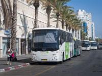 אוטובוס של חברת אפיקים באשדוד/  צילום: Shutterstock א.ס.א.פ קריאטיב