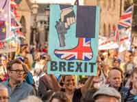 הפגנה נגד הברקזיט./ צילום: Shutterstock  א.ס.א.פ קריאייטיב