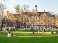 סטודנטים בקמפוס אוניברסיטת אילינוי /צילום:  Shutterstock/ א.ס.א.פ קריאייטיב