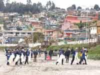 מתנדבים מנקים את חוף הים של צ'ילה / צילום: רויטרס