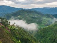 אוגנדה / צילום:   Shutterstock | א.ס.א.פ קריאייטיב