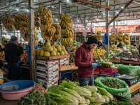 שוק ברמאללה. / צילום: Shutterstock ס.א.פ קריאייטיב