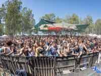 פסטיבל דוף  / צילום: חיים סולומון
