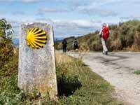 מסלול הקמינו הספרדי מסומן לכל אורכו בסמל הצדפה / צילום: Shutterstock | א.ס.א.פ קריאייטיב