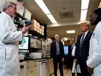 """נשיא ארה""""ב דונלד טראמפ מקבל תדריך ממדענים על נגיף הקורונה / צילום: Evan Vucci, Associated Press"""
