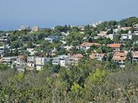 שכונת דניה. קפיצה גדולה בעסקאות בחלק התחתון של השכונה  / צילום: איל יצהר, גלובס