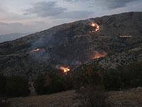 """שריפות בשמורת טבע בגולן בעקבות אימונים של צה""""ל / צילום: עמי דורפמן, רשות הטבע והגנים"""