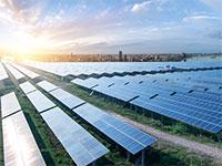 פאנלים סולאריים בשנחאי / צילום: shutterstock, שאטרסטוק