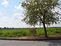 קרקע למכירה, בנימינה / צילום: בר אל