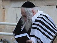 הרב אליעזר ברלנד נלקח למעצר / צילום: יוסי זמיר