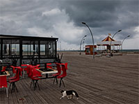 נמל תל אביב נטוש בצל הקורונה / צילום: Oded Balilty, Associated Press