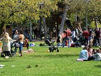 משפחות בפארק / צילום: איל יצהר, גלובס