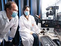 """המדענים אסתי טולדנו וגאיללם להסו, אוניברסיטת בן גוריון / צילום: יח""""צ"""