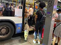 מחכים בתור לעלות לאוטובוס / צילום: בר לביא, גלובס