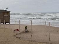 עובד עירייה מנקה בחוף של בת ים / צילום: Sebastian Scheiner, Associated Press