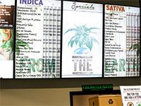 חנות של From The Earth בסנטה אנה / צילום: אתר החברה