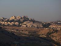 התנחלות בגדה המערבית / צילום: Sebastian Scheiner, Associated Press