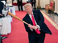 דונלד טראמפ בתצוגת בייסבול בבית הנשיא / צילום: Evan Vucci, Associated Press