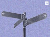 שלושה גופים - שלושה נתונים שונים / צילום: shutterstock, שאטרסטוק