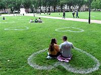 מקומות מסומנים בפארק בריסטול בבריטניה / צילום: Rebecca Naden, רויטרס