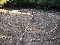 מבוכי אבנים בתוך היער / צילום: יותם יעקבסון