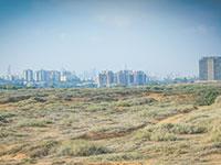 חוף התכלת, הרצליה / צילום: שלומי יוסף, גלובס