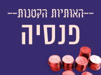 האותיות הקטנות - פנסיה / עיצוב: אפרת לוי, גלובס