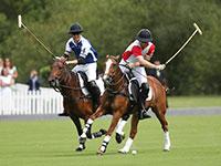 משחק פולו של בני המלוכה הבריטים, סמל לאריסטוקרטיות. שחקני משחק הפולו הרוכבים על סוסים הפכו לסמלי אופנה מוכרים / צילום: Andrew Matthews, Associated Press