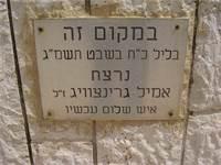 לוחית זיכרון לאמיל גרינצוויג בירושלים / צילום: dr. avishai teicher