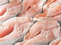 דגים קפואים / צילום: שאטרסטוק