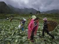 איכרים במחוז סיצ'ואן בסין. עיקר העניים חיים בכפרים צילום:PA Andy Wong