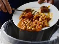 זורקים אוכל אל הפח / צילום: שאטרסטוק