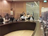 ועדת החוקה היום / צילום: דוברות הכנסת