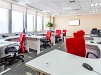 משרד ריק בצל הקורונה / אילוסטרציה: שאטרסטוק