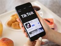 TIKTOK / צילום: שאטרסטוק