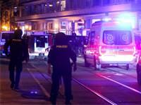 מתקפת טרור בשישה מוקדים בווינה / צילום: AP