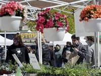 חנות פרחים במדינת אילנוי / צילום: Nam Y. Huh, Associated Press