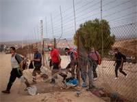 פועלים פלסטיניים חוצים את גדר ההפרדה בדרך לעבודה בישראל צילום:PA Oded Balilty